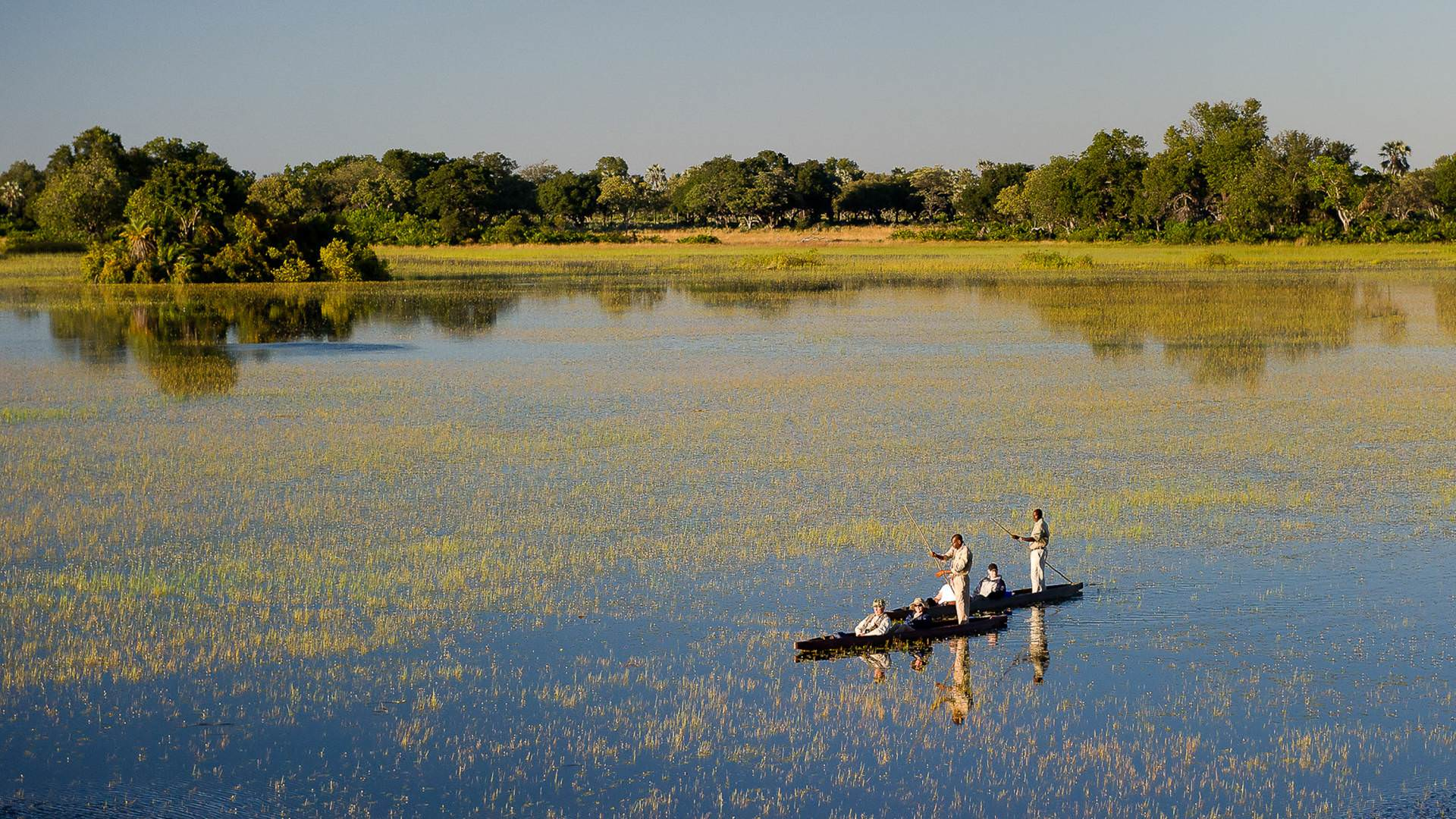 Makoro safari okavango delta botswana