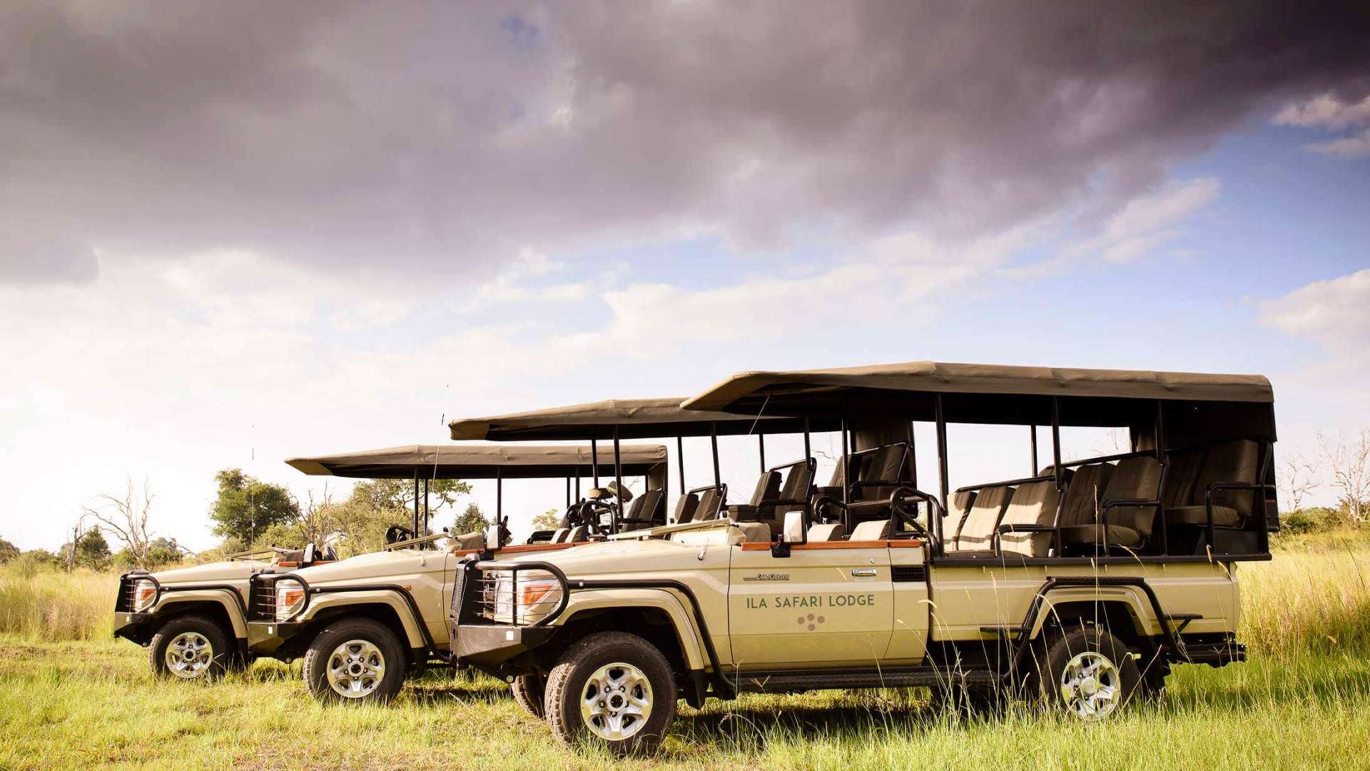 Pirschfahrten Game Drives - Infos Von Safari Experten | Pinto Africa
