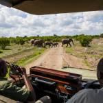 jabali ridge tansania game drive