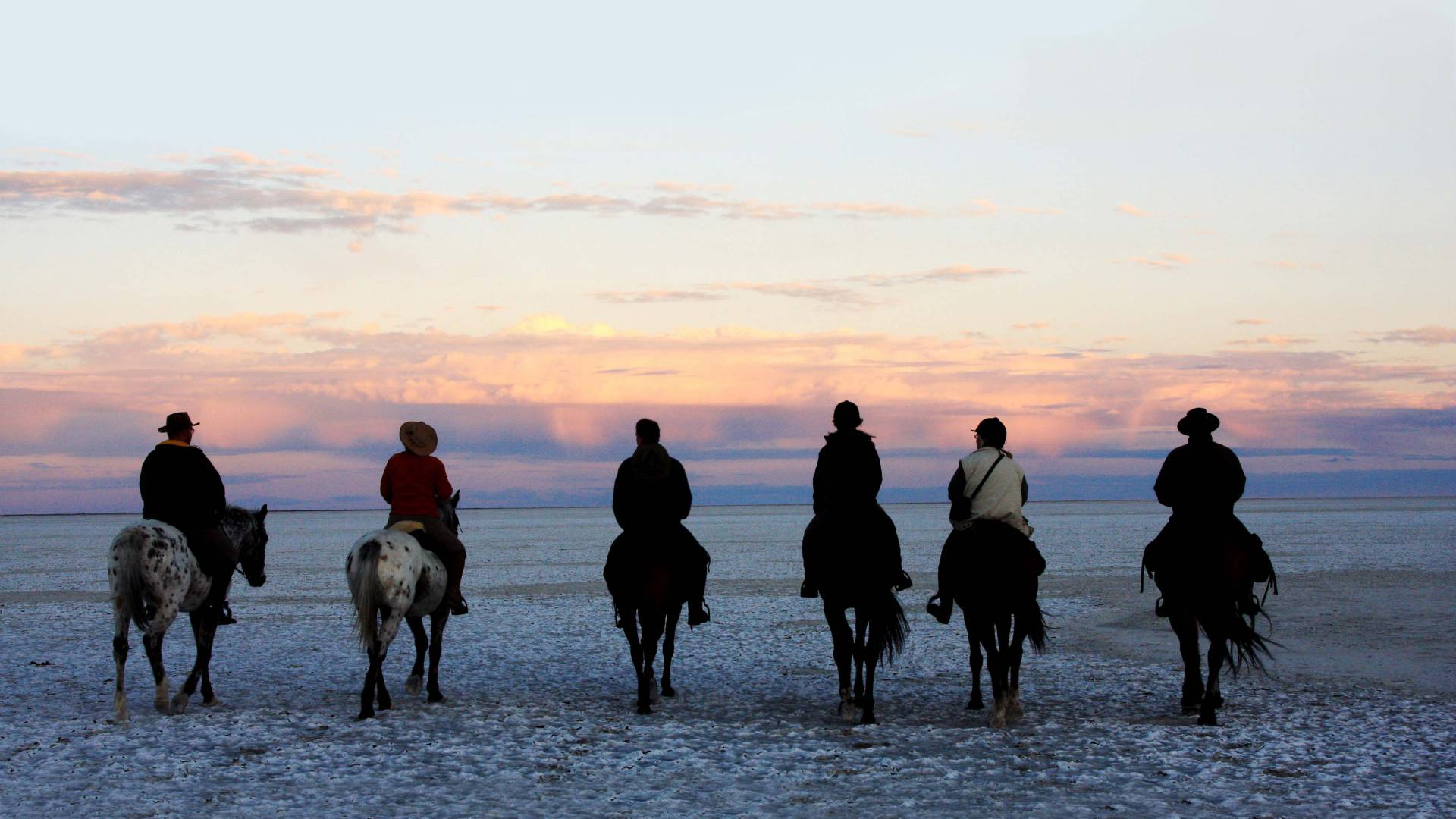 Horse safaris jacks camp