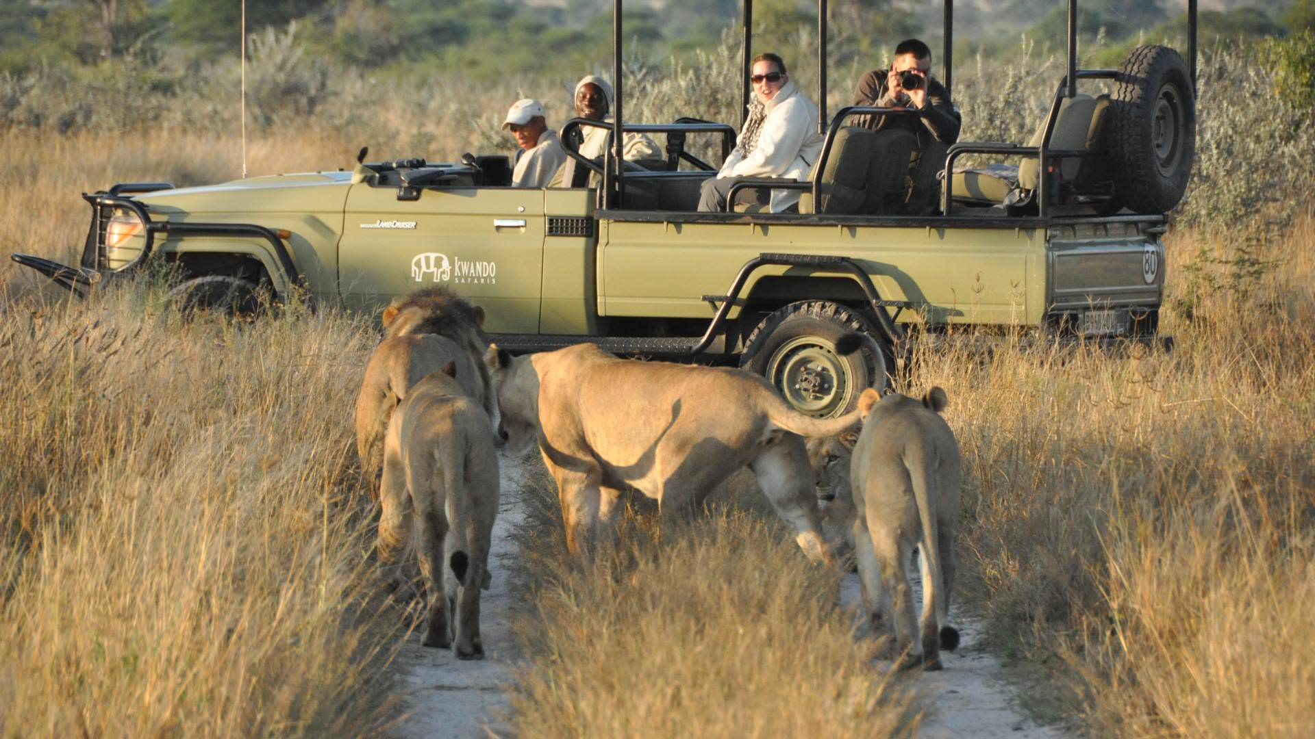 kwando-tau-pan-camp-central-kalahari-botswana