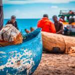 Dugouts and fishermen lake malawi