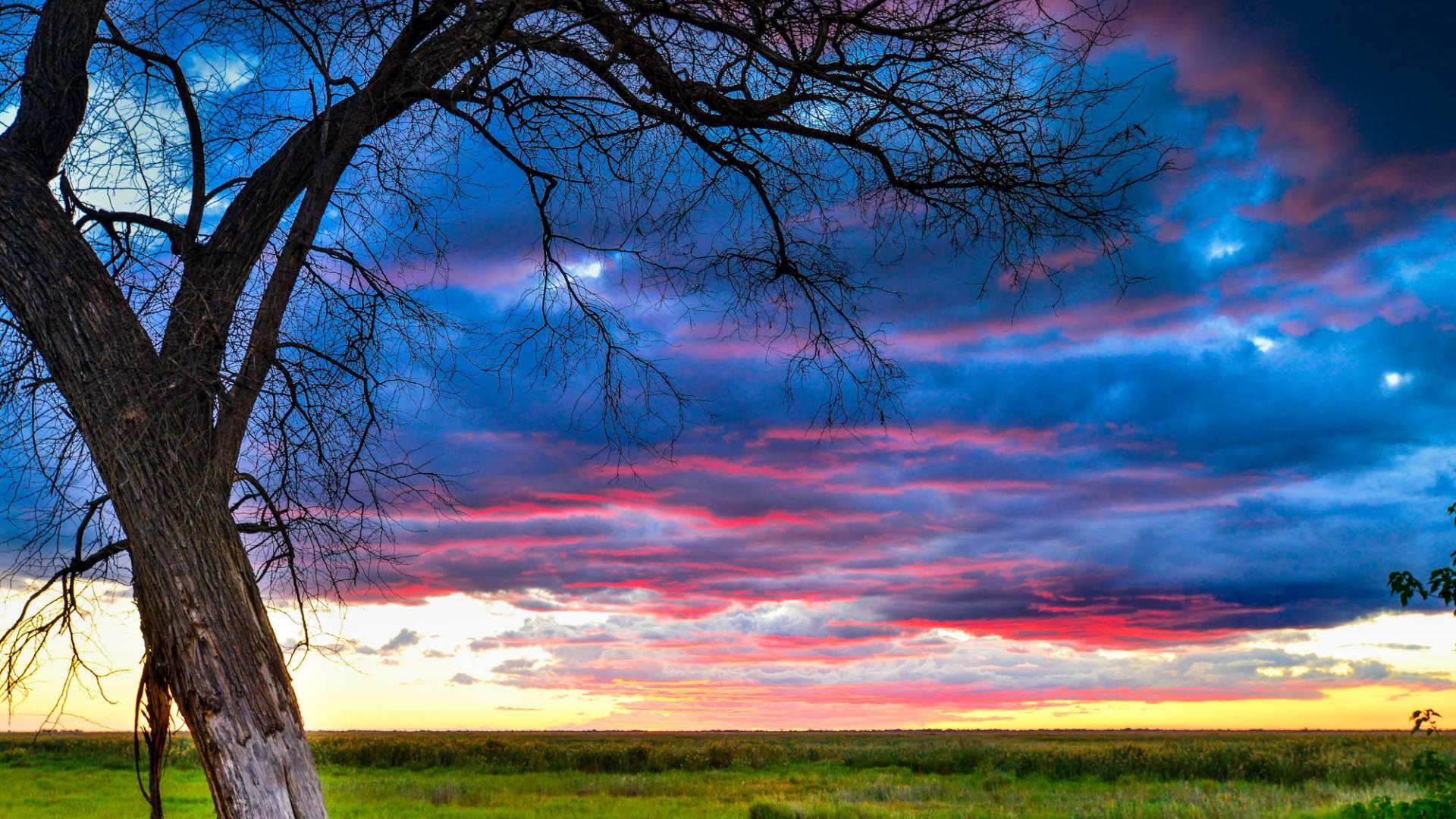 sunset in linyanti bush camp