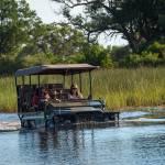 Game Drive Wasser strasse Littel vumbura okavango delta