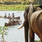 Chongwe river camp canoe safari lower zambezi zambia