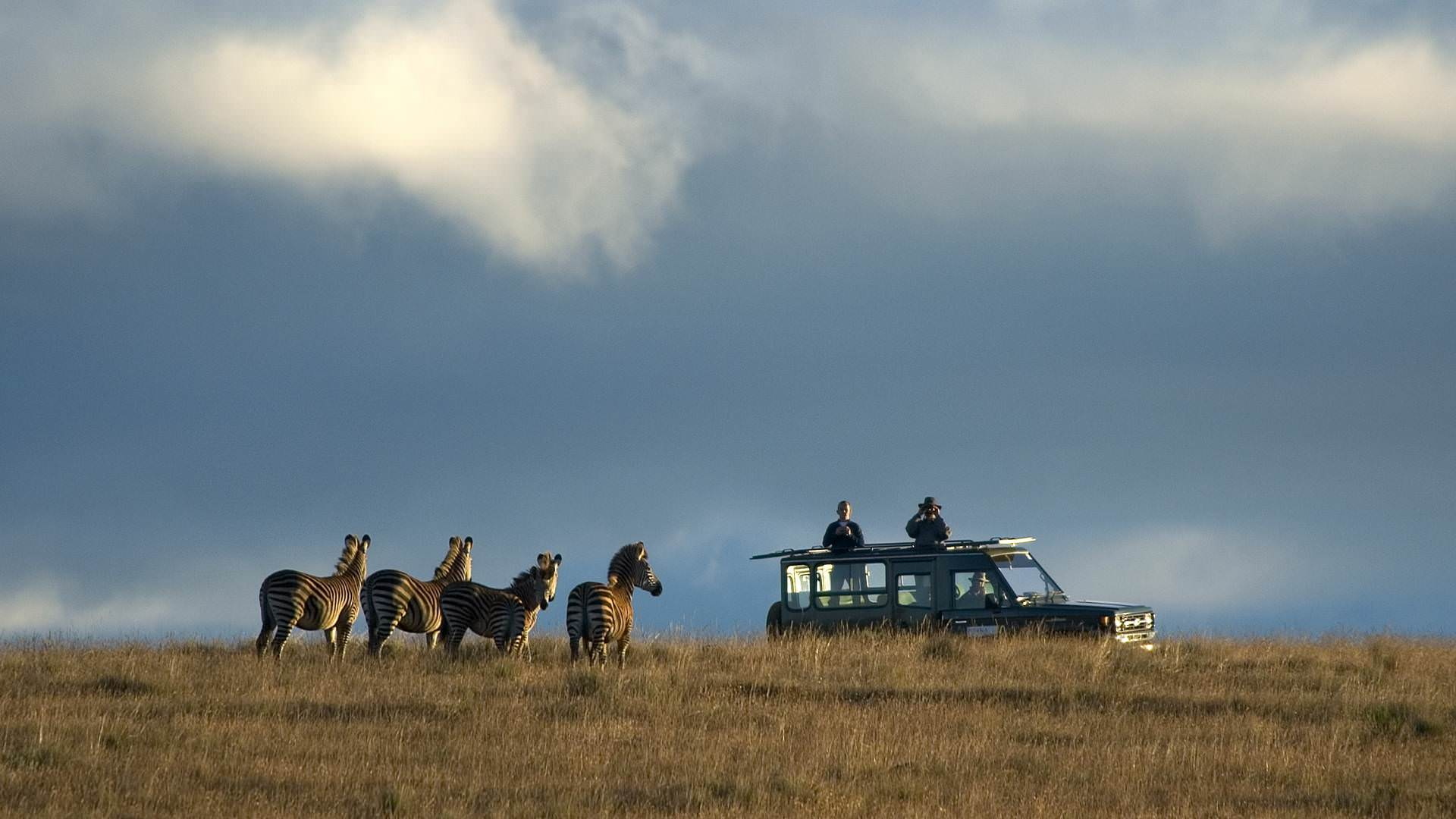 chelinda-camp-nyika-national-park-central-african-wilderness-safaris-malawi-afrika