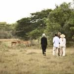 Abenteuerliche Walking-Safaris