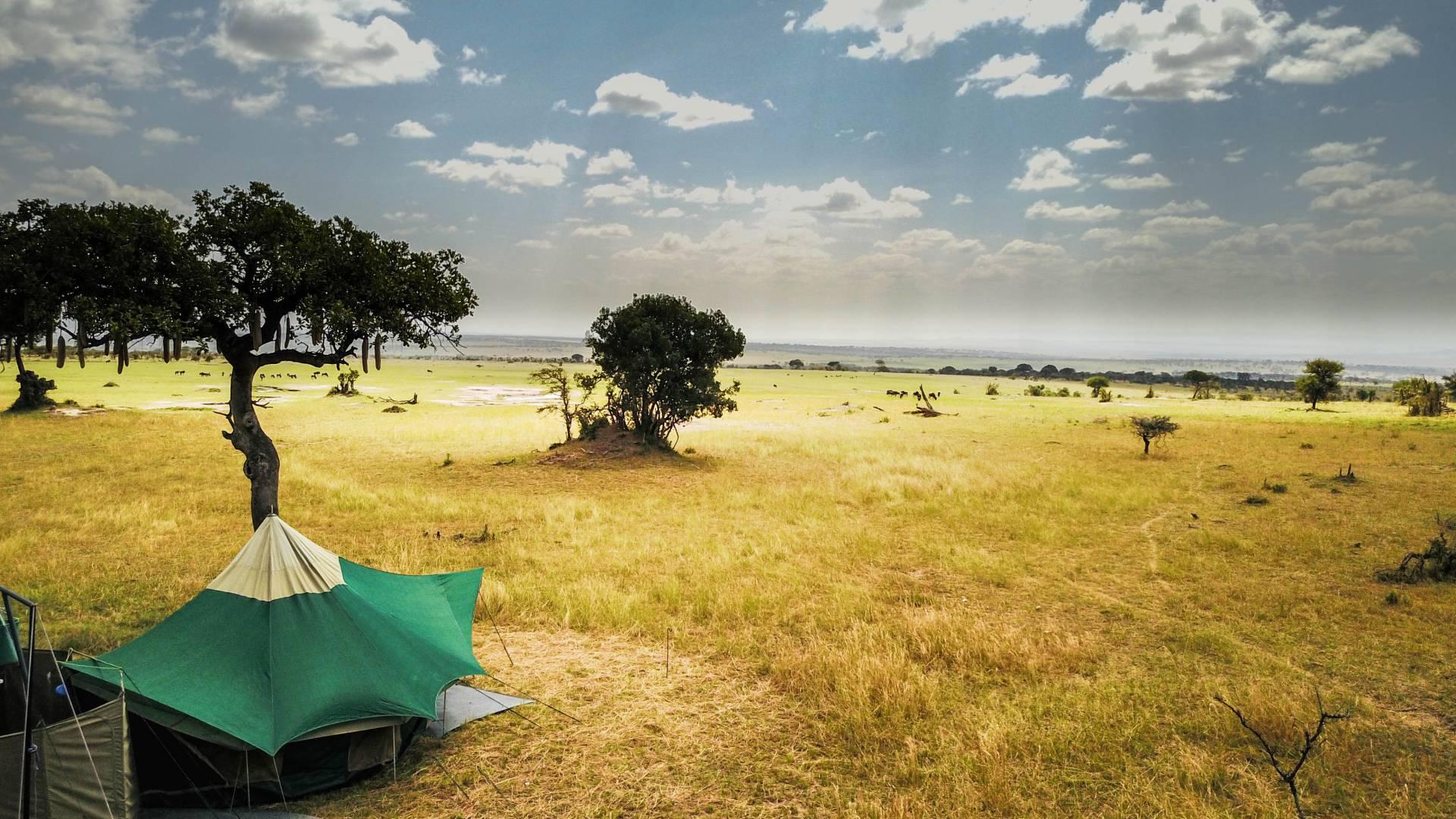 Serengeto mal anders kogatende wayo africa