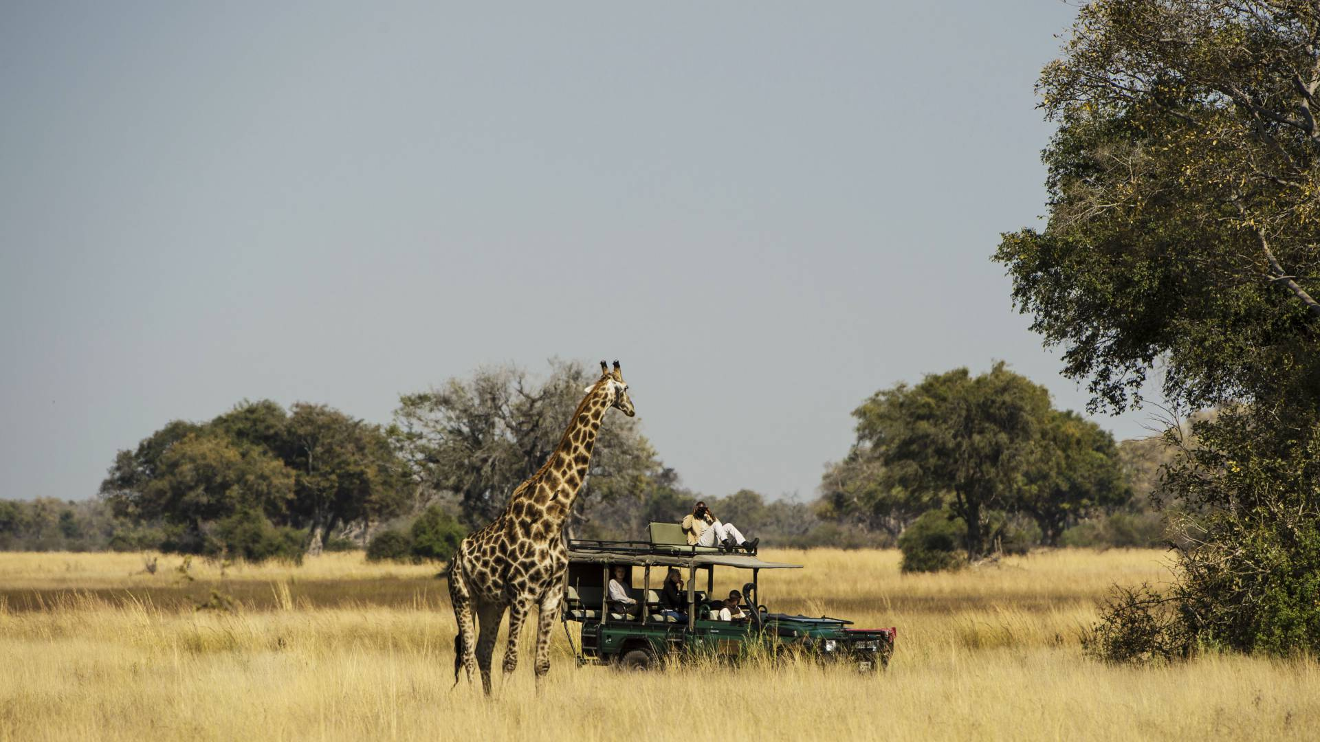 Mobile Safari Botswana mit Barclay -Stenner