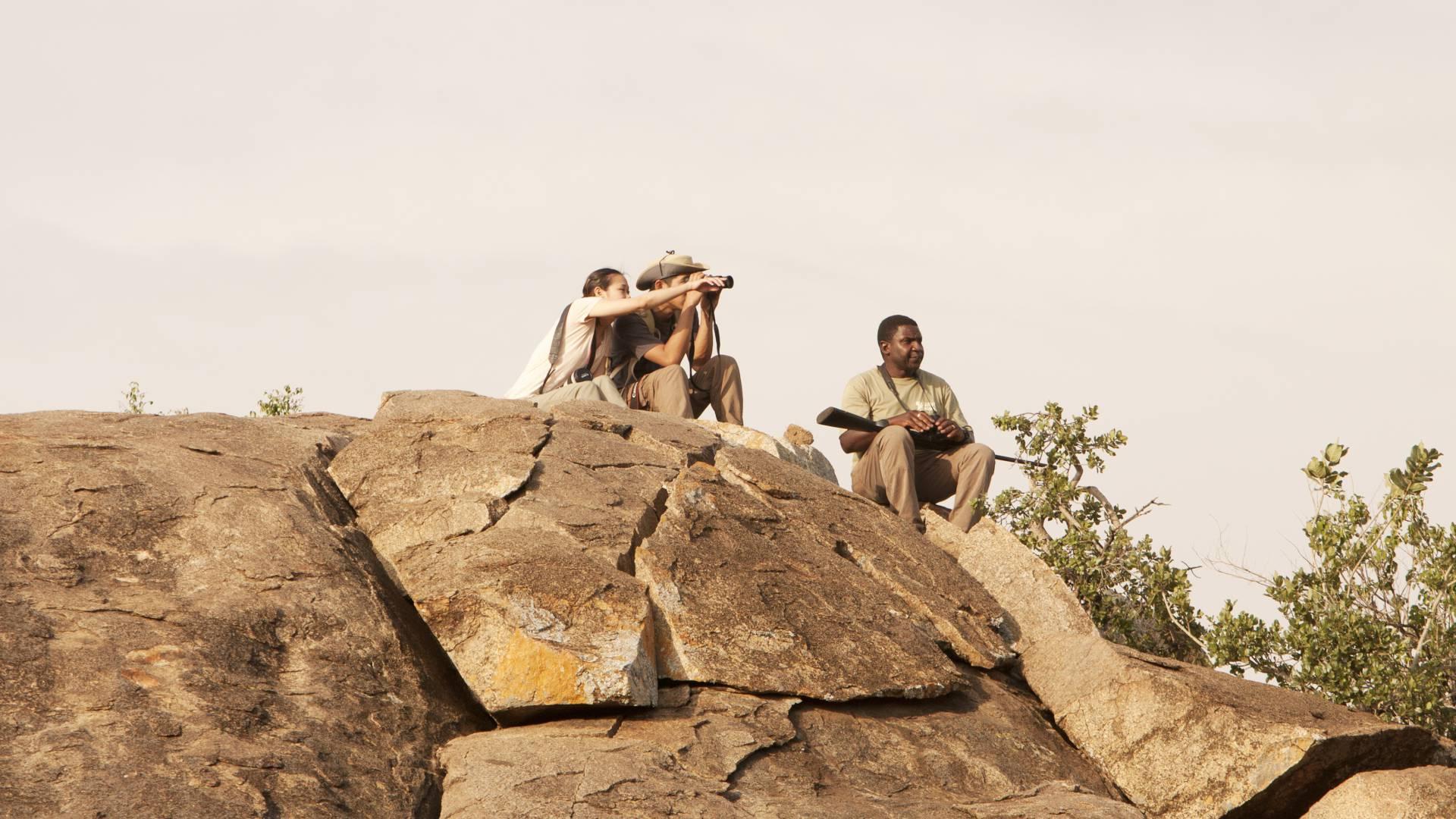 wayo afrika die wilderbeast migration folgen