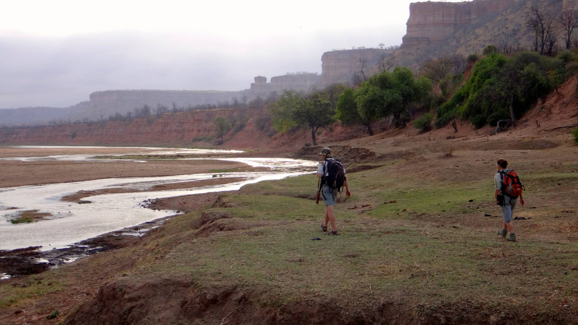 Walking Safari with gonarezhou bushcamps