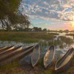 Mokoro Pom Pom Camp Okavango