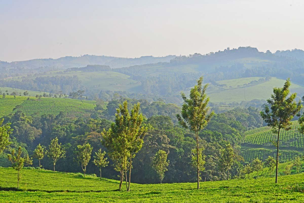 Spektakuläre Landschaft