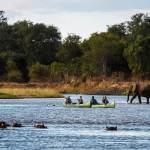 mana-pools-national-park-zimbabwe