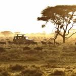 Sunset Im Serengeti