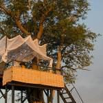 Sleep out with shenton safaris