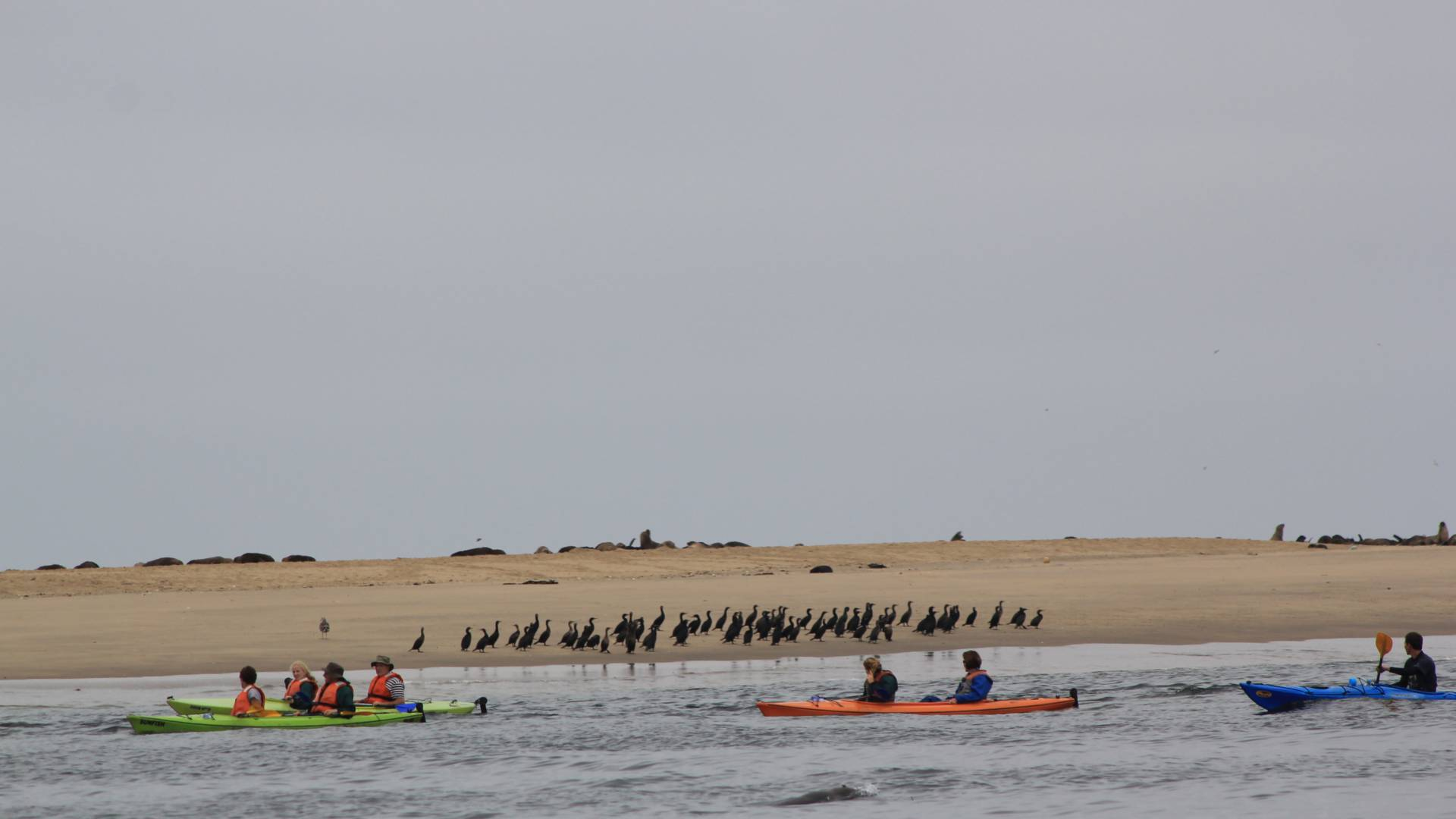 Kayak in Walvis Bay