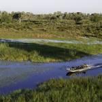 Boot Safari Okavango Delta
