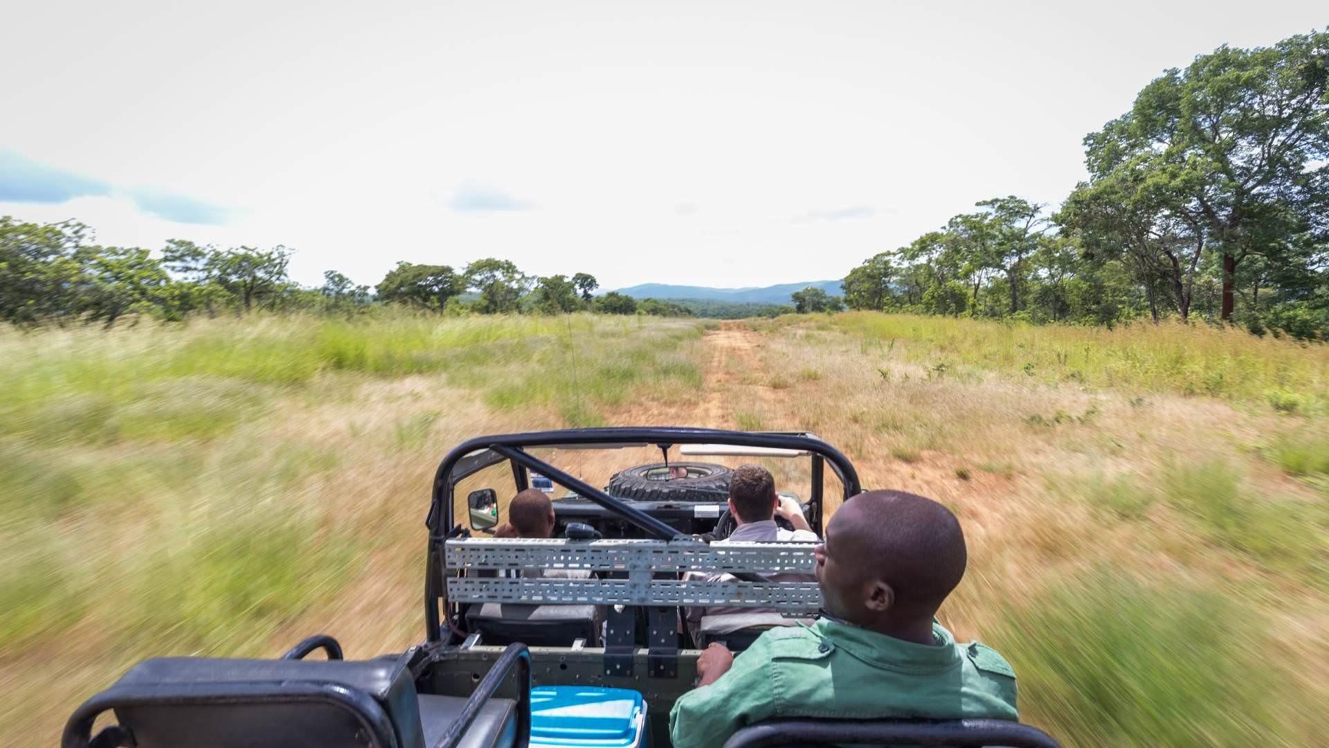 Tongole Wilderness Lodge, Nkhotakota Wilderness Reserve, Malawi Mit Safari Experten   Pinto Africa