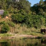 Tongole Wilderness Lodge, Nkhotakota Wilderness Reserve, Malawi Mit Safari Experten | Pinto Africa