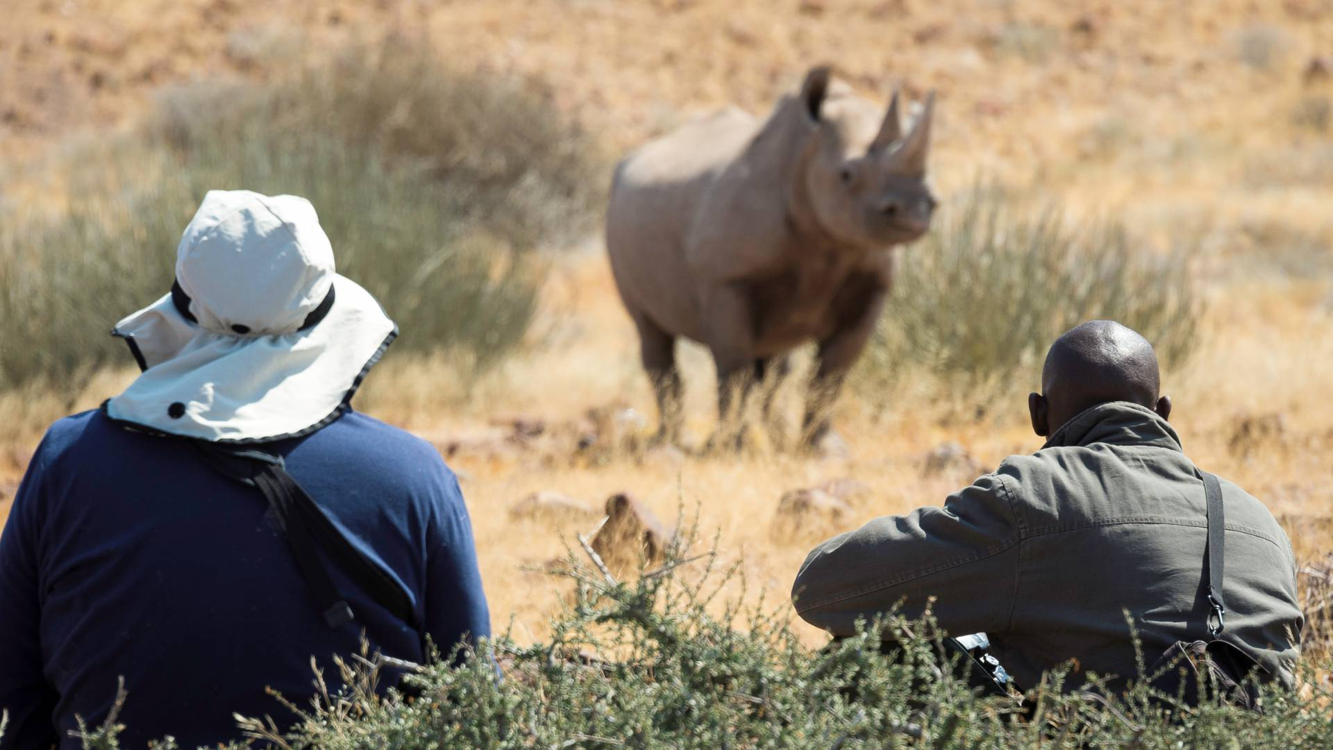 Wilderness safaris & Ultimate Namibia Rhino Trackign