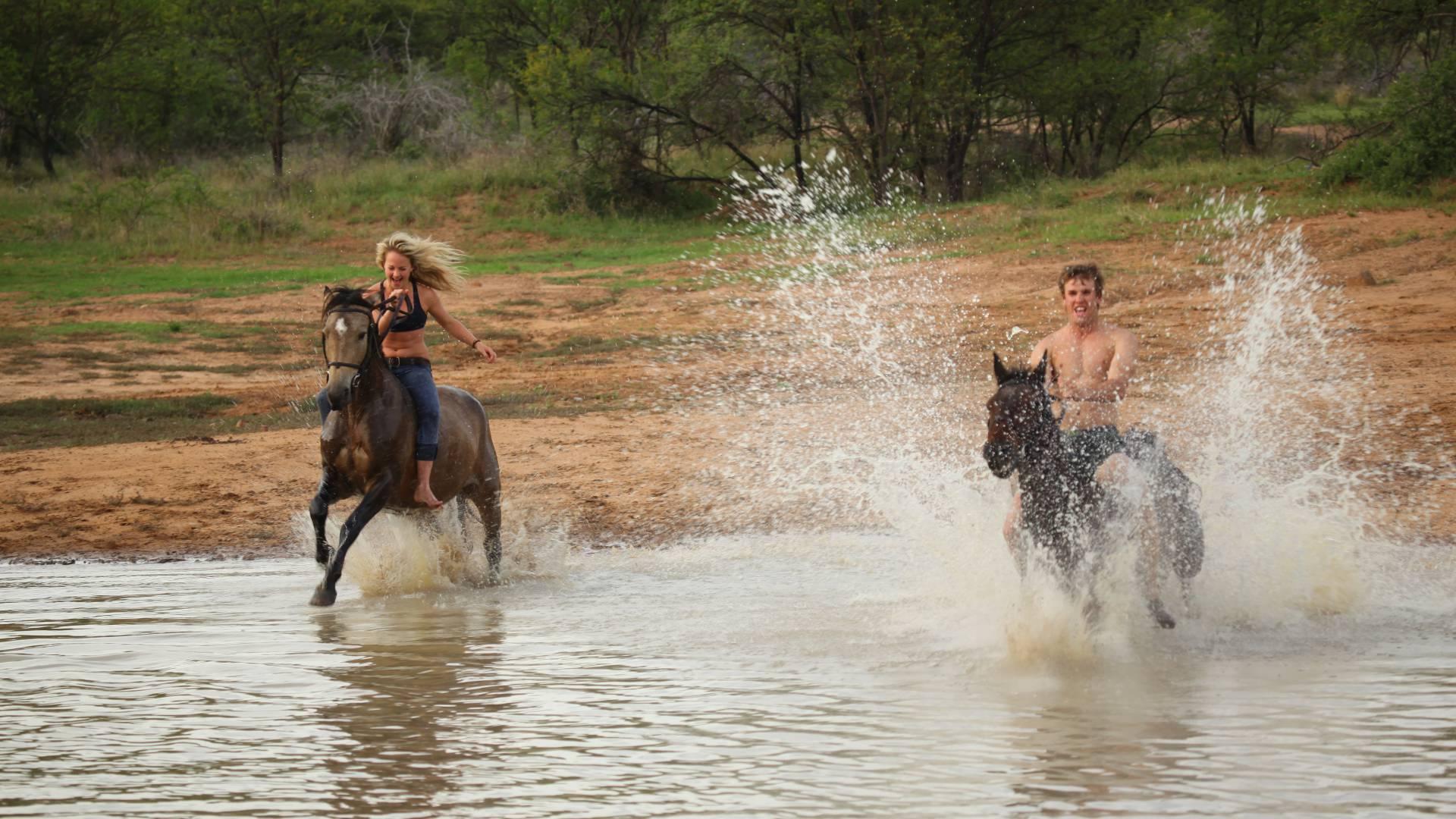 Abenteuerliche Pferd-Safaris