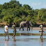 kapamba Bushcamp South Luangwa Sambia mit Safari spezialisten