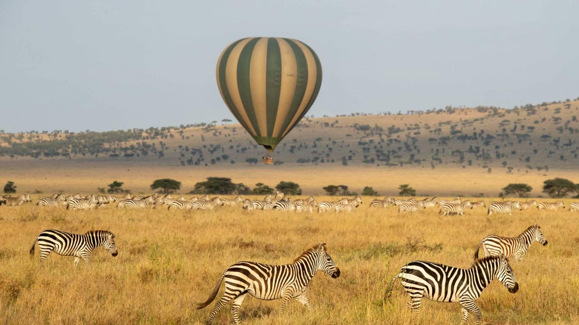 Heißluftballon Safari